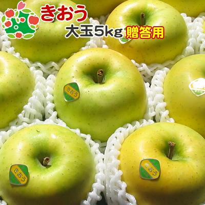 9月上旬収穫 即日出荷 りんご きおう 特選 青森県産 期間限定送料無料 ギフト 5kg 贈答用 賜物 大玉