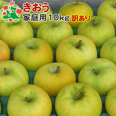 9月上旬収穫 即日出荷 訳あり りんご マーケット 家庭用キズあり 青森県産 お中元 きおう 10kg