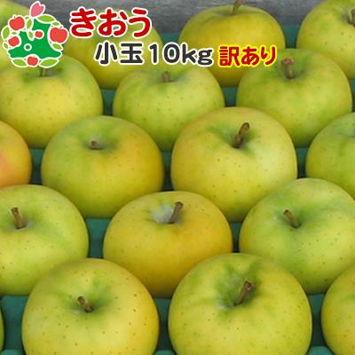人気急上昇 9月上旬収穫 即日出荷 訳あり 全品最安値に挑戦 りんご きおう 家庭用 10kg キズあり 小玉 青森県産