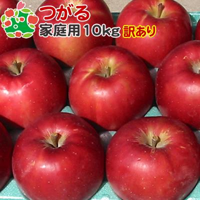 9月上旬収穫 直輸入品激安 きおうとの詰め合わせ可能 即日出荷 訳あり りんご 10kg 青森県産 サンつがる 家庭用キズあり 新品■送料無料■ 葉とらず