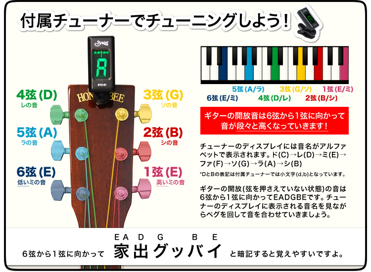 原声吉他蜂蜜蜂 W-15/F-15 akogyrimited 调谐器设置 (UCW)
