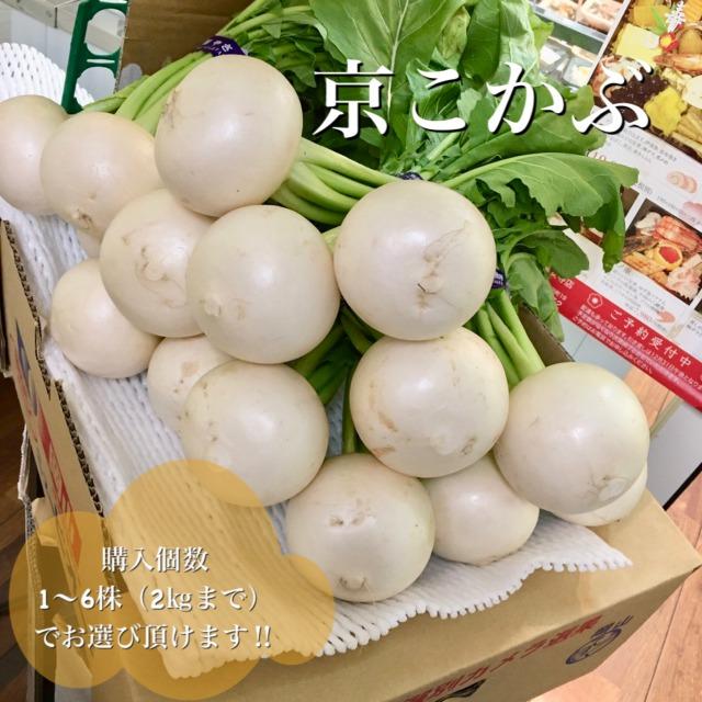 【冬季限定】京都産 京こかぶSサイズ 1株(葉付・葉込約300g) ※※購入個数は4~6株(2kgまで)でお選びください※※ 6株以上の商品ページもございます