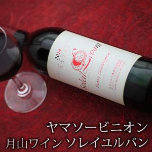 新色追加して再販 月山ワイン ソレイユ ルバン ヤマソービニオン 辛口 地ワイン 赤ワイン 山形 即日出荷