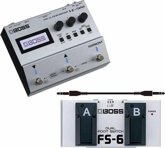 本物品質の 【送料無料】ボス BOSS VE-500(フットスイッチ BOSS/FS-6+audio-technica製接続ケーブル付) ボーカル用サウンド・メイキング・ツール(ACアダプター付属)【smtb-TK】, ブルーマート:d0bcc4e7 --- az1010az.xyz