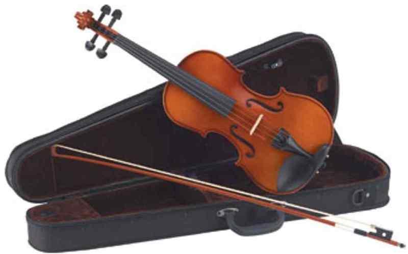 【送料無料】Carlo giordano VS-1AY バイオリンセット アルファユー弦 仕様 サイズ[4/4 3/4 1/2 1/4 1/8 1/10 1/16]【代金引換不可】【smtb-TK】