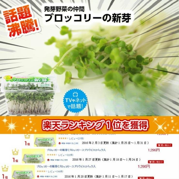 ブロッコリーの新芽(ブロッコリースプラウト) 12パック入 花粉症など季節の変わり目こそ発芽野菜で栄養補給!