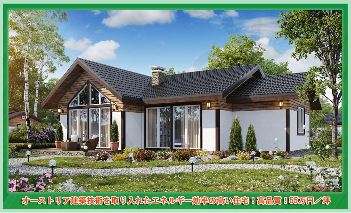 オーストリア建築技術を取り入れたエネルギー効率の高い住宅!高品質!55万円/坪 注文住宅・お取り寄せ【PD-132-40坪】