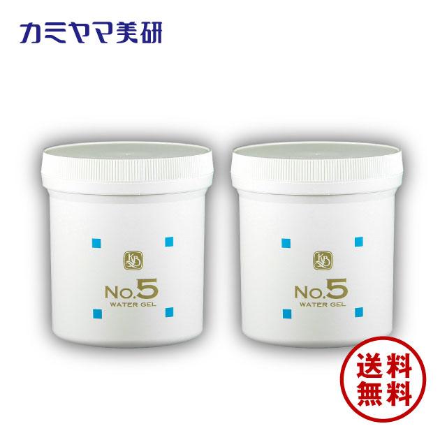 No.5・保湿パック・500g(2個セット)【カミヤマ美研】【送料無料】