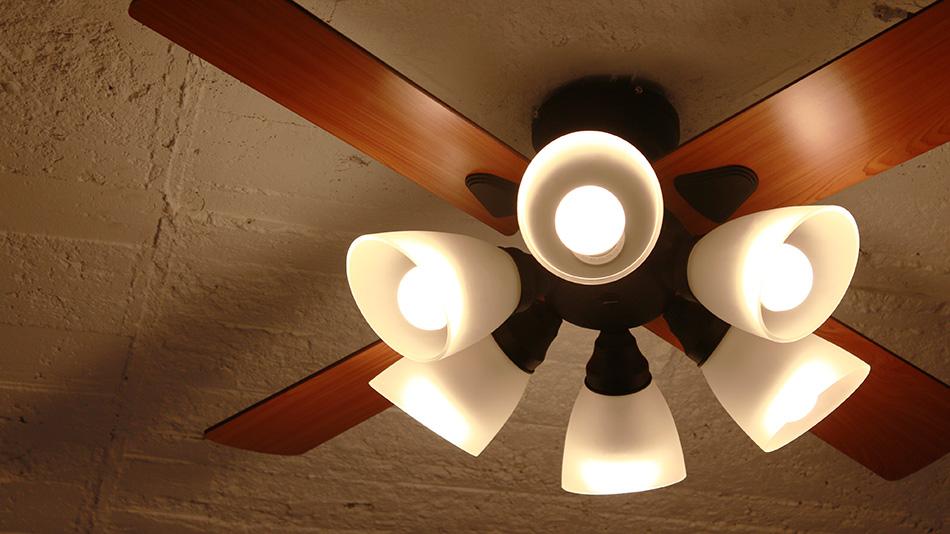 6灯ライト 《plus more》プラスモア シーリングファン 6灯ライト Windouble 6L リモコン付き 白熱電球・電球型蛍光ランプ対応 デザイン照明 ブラック BIG-102