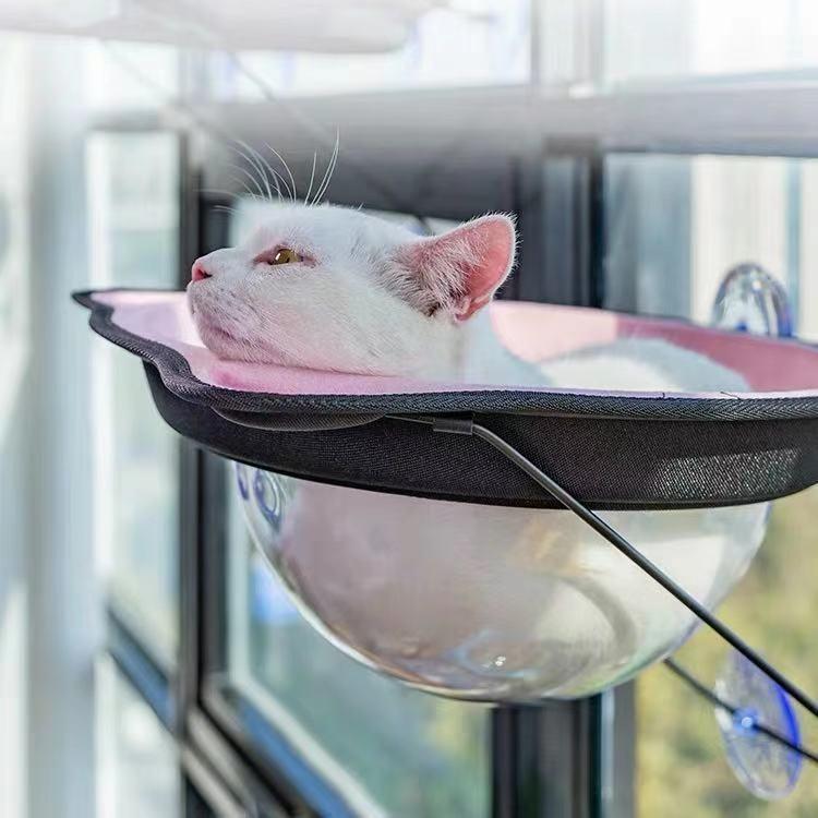 室内飼いの猫ちゃんに最適な猫ハンモック 猫 ベッド 市場 猫ハンモック 猫の窓のベッド 荷物ローディング17kg 超激安特価 耐久性 強力な吸盤 猫窓 猫のベッド