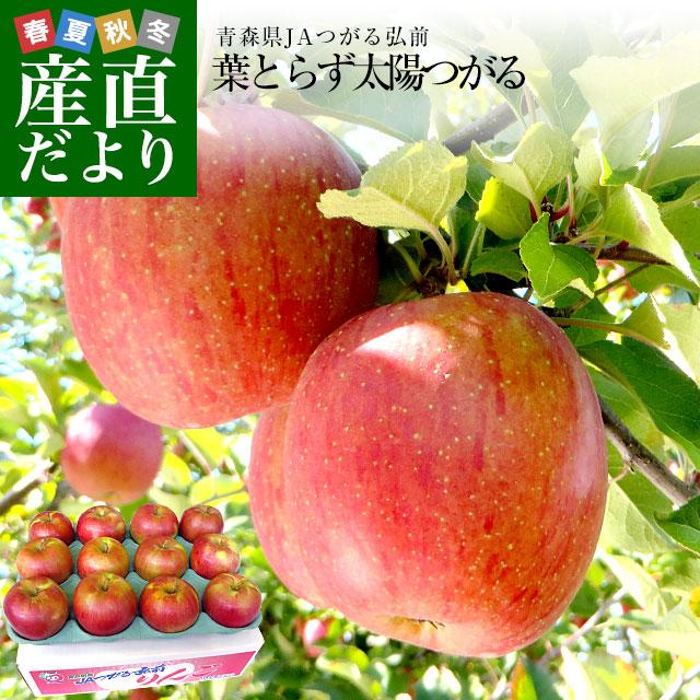 優先配送 激旨の葉とらずりんご 期間限定 見かけより味にこだわって作ったりんごです 青森県より産地直送 JAつがる弘前 葉とらず太陽つがる 林檎 約3キロ 9玉から13玉 リンゴ りんご