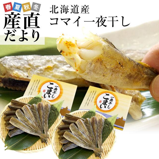 北海道極上の味 この味わいを日本中の方に知ってほしい 北海道より直送 北海道産 セール 登場から人気沸騰 コマイ 日本全国 送料無料 氷下魚 送料無料 大ボリューム 1キロ 500g:15尾前後×2箱 一夜干し