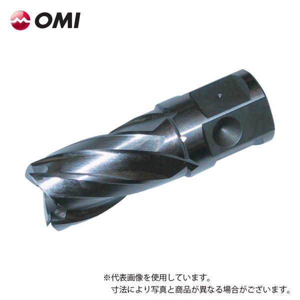 OMI 新着セール 大見工業 1着でも送料無料 HCSQ140 ライトボーラー用刃物