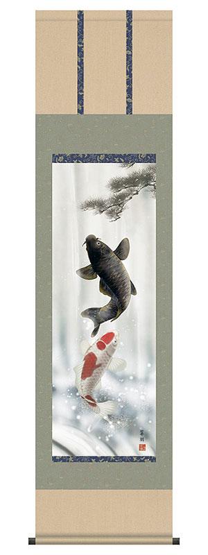 【掛け軸端午の節句 夫婦鯉(鈴木 翠朋)】幅44.5cm×高さ164cm【YDKG-k】【smtb-k】【KB】おしゃれ モダン