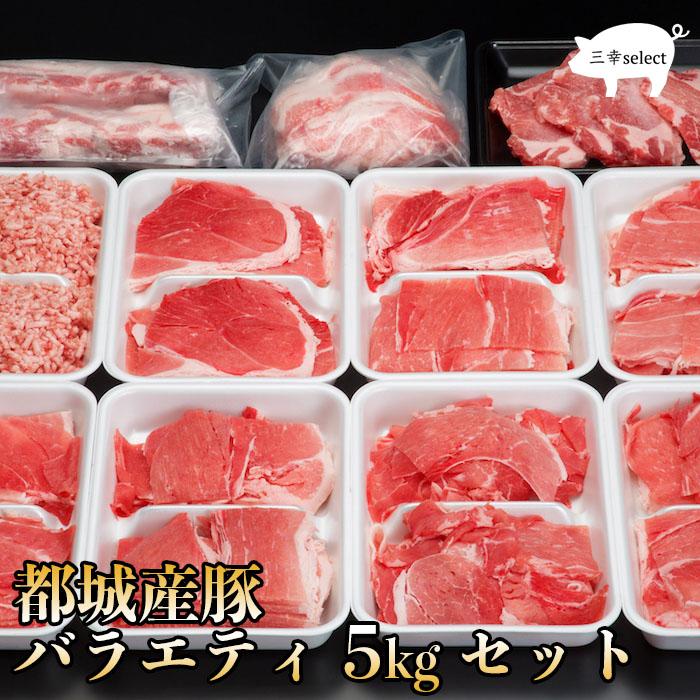 自然豊かな都城市ですくすく育った豚肉です。徹底した衛生管理の中、餌・水・飼育にこだわり、大変高品質な豚肉です。この豚肉を満足して頂けるように5kgのセットにしました。 【都城産豚バラエティ5kgセット】母の日 プレゼント 内祝い お返し ギフト 卒業祝い 入学祝い 国産 肉 豚肉 通販 内祝 お取り寄せ 高級 グルメ 父の日 食品 誕生日