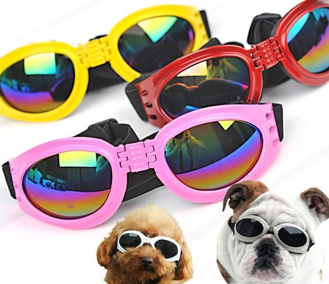 ワンちゃんとおそろいコーデ 犬のサングラス おしゃれ 可愛い お出かけ用サングラス 犬 休み 奉呈 サングラス の