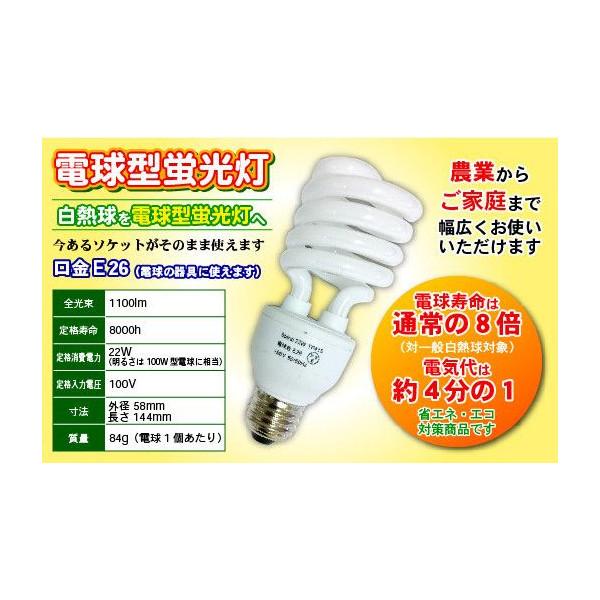 電球型蛍光灯  TP-415 100個