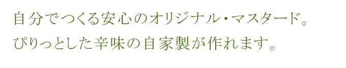 有機オーガニック素材の無農薬・無化学肥料「マスタード シード」 25g♪♪【洋芥子/カラシナ/洋がらし/粒マスタード/マスタードブラウン】【スパイスハーブ】【フェアトレード】05P03Dec16