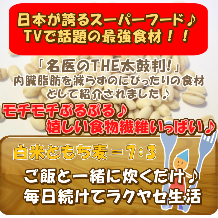 5個セット はくばく もち麦ごはん 50g×12 もち麦 スティックタイプ 600g 3kg 【※別途送料 北海道・九州・沖縄】