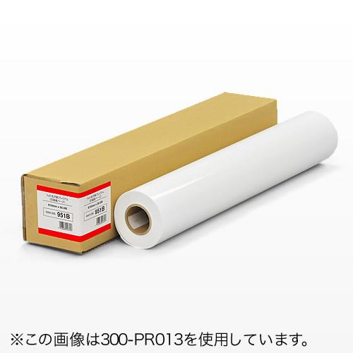 プロッター用紙・ロール紙(印画紙・1067mm×30.5m・42インチロール)[300-PR015]【サンワダイレクト限定品】【送料無料】