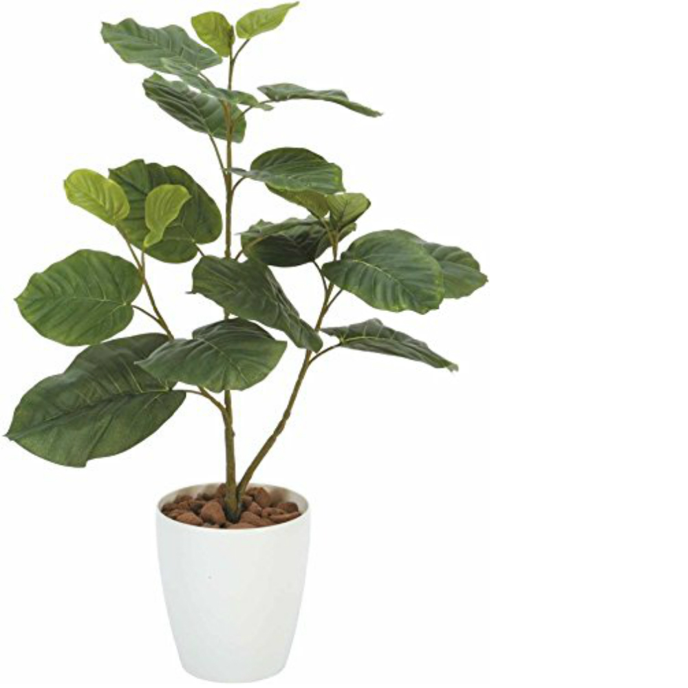 光触媒 光の楽園 ウンベラータ80 211a100約 幅52×奥行35×高さ80cm人工植物 造花 フェイクグリーン おしゃれ インテリア 大型