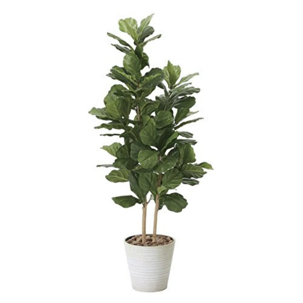 光触媒 人工観葉植物 造花(フェイクグリーン・フェイクフラワー)光の楽園 カシワバゴム1.6m 825A380お部屋の消臭・抗菌・防汚効果があります。水やり・お手入れ不要置くだけで素敵な癒し空間を演出してくれます。