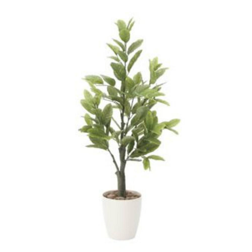 光触媒 人工観葉植物 造花(フェイクグリーン・フェイクフラワー)光の楽園 レモン1.0m 818A150お部屋の消臭・抗菌・防汚効果があります。水やり・お手入れ不要置くだけで素敵な癒し空間を演出約 幅43×奥行43×高さ100cm