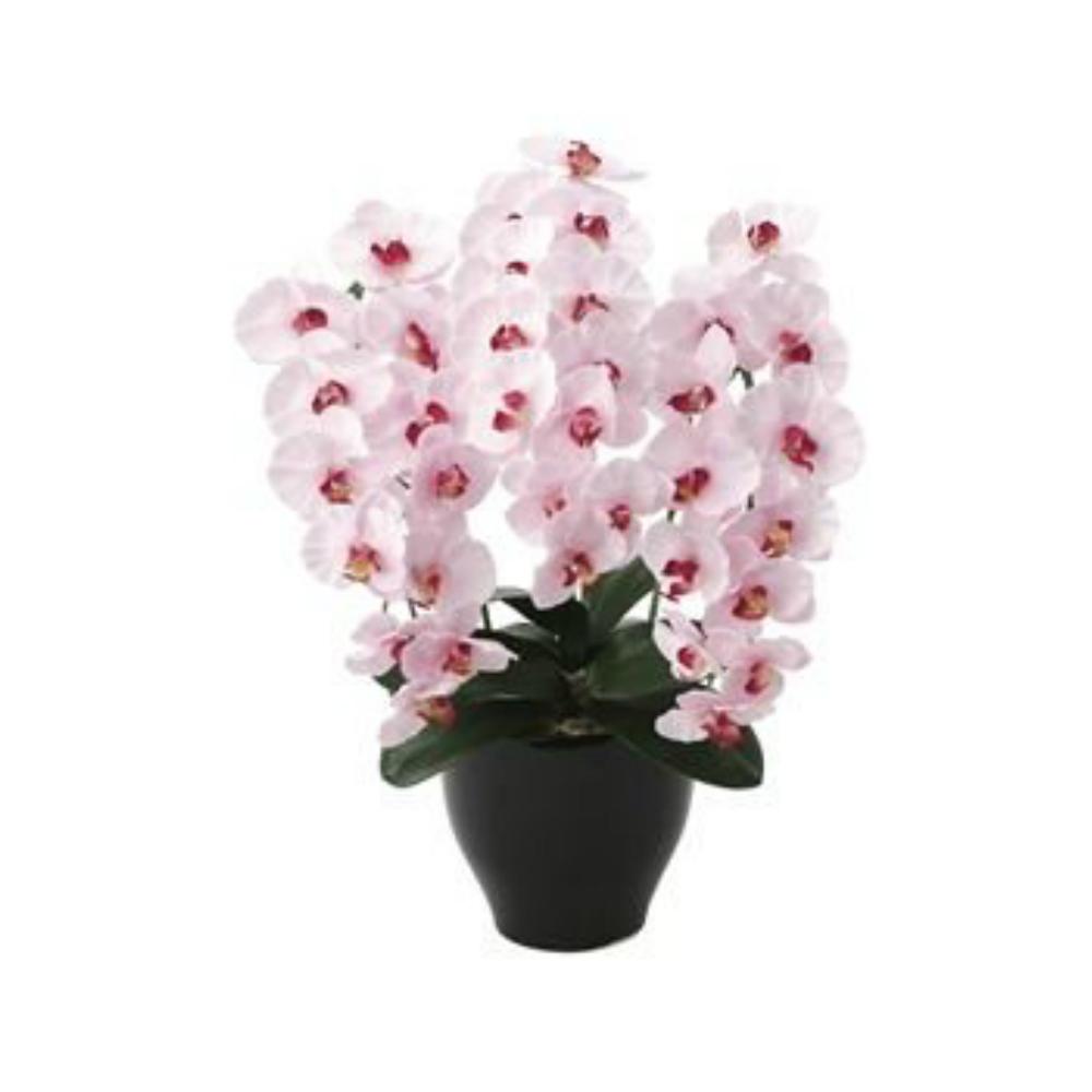 光触媒 人工観葉植物 造花(フェイクフラワー)光の楽園 アートフラワー プレミアム胡蝶蘭P 660A125お部屋の消臭・抗菌・防汚効果があります。水やり・お手入れ不要置くだけで素敵な癒し空間約 幅45×奥行40×高さ68cm