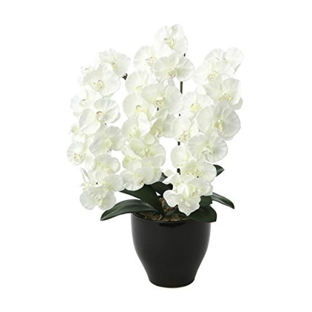 光触媒 人工観葉植物 造花(フェイクグリーン フェイクフラワー)光の楽園 アートフラワー プレミアム胡蝶蘭W 659A125お部屋の消臭・抗菌・防汚効果があります。水やり・お手入れ不要置くだけで素敵な癒し空間を演出してくれます。