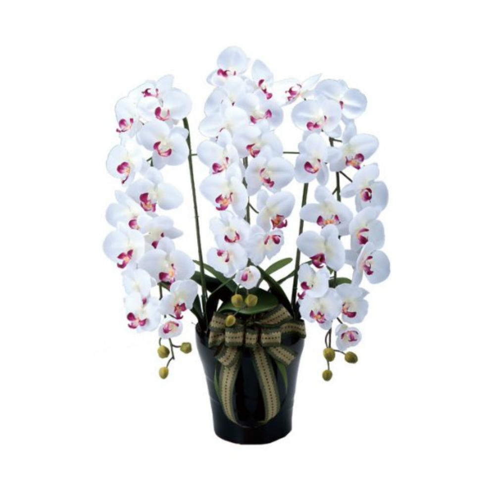 光触媒 人工観葉植物 造花(フェイクフラワー)光の楽園 アートフラワー ロイヤル胡蝶蘭 310A200お部屋の消臭・抗菌・防汚効果があります。水やり・お手入れ不要置くだけで素敵な癒し空間約 幅55×奥行55×高さ76cm