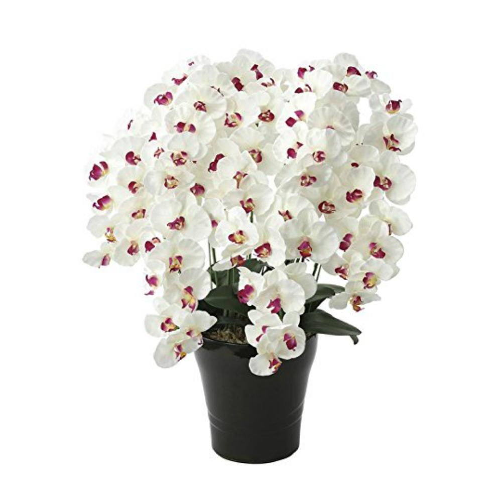 光触媒 人工観葉植物 造花(フェイクフラワー)光の楽園 アートフラワー プレミアム胡蝶蘭7本立 657A250お部屋の消臭・抗菌・防汚効果があります。水やり・お手入れ不要置くだけで素敵な癒し空間約 幅55×奥行50×高さ75cm