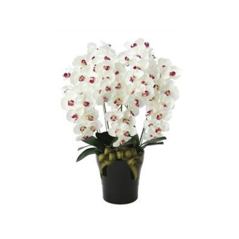 光触媒 人工観葉植物 造花(フェイクフラワー)光の楽園 アートフラワー プレミアム胡蝶蘭5本立 653A180お部屋の消臭・抗菌・防汚効果があります。水やり・お手入れ不要置くだけで素敵な癒し空間約 幅50×奥行45×高さ75cm