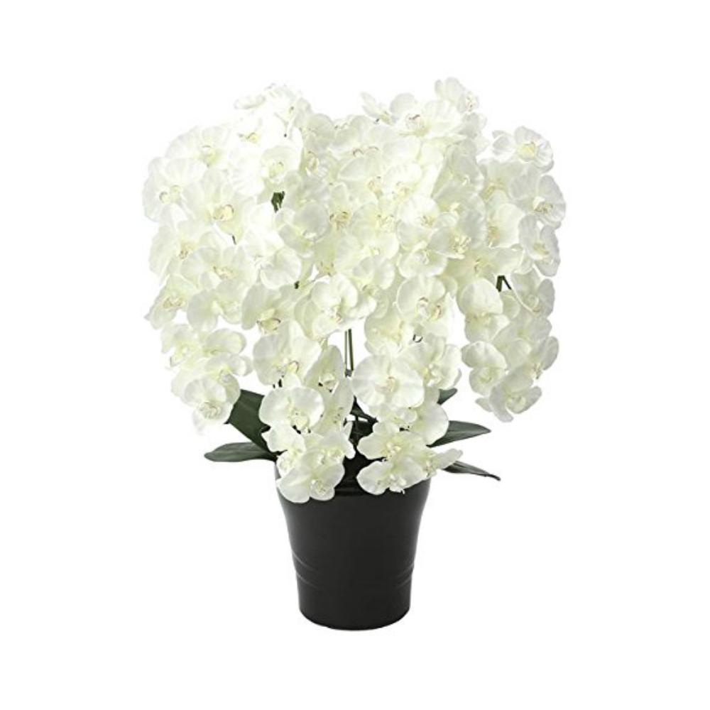 光触媒 人工観葉植物 造花(フェイクフラワー)光の楽園 アートフラワー プレミアム胡蝶蘭7本立W 658A250お部屋の消臭・抗菌・防汚効果があります。水やり・お手入れ不要置くだけで素敵な癒し空間約 幅55×奥行50×高さ75cm