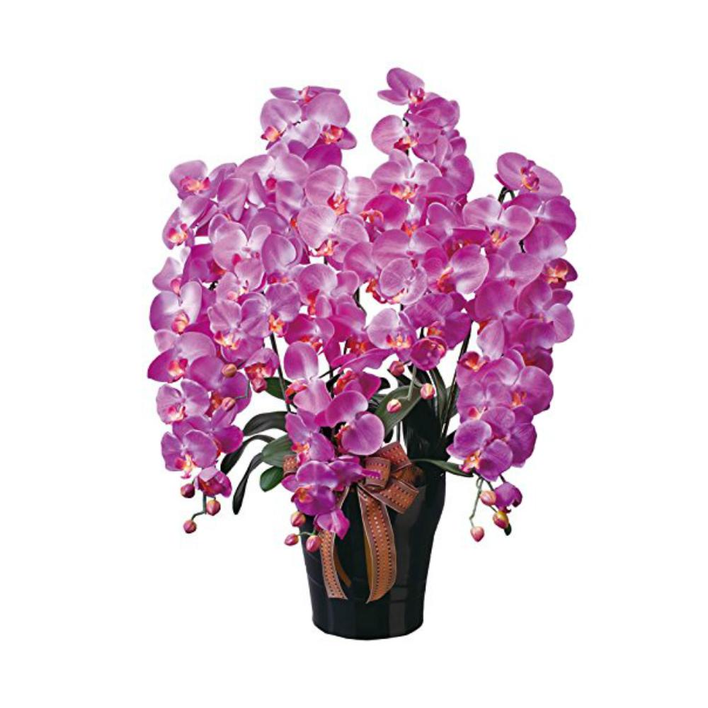 光触媒 人工観葉植物 造花(フェイクフラワー)光の楽園 アートフラワー ロイヤル胡蝶蘭5本立L 446A300お部屋の消臭・抗菌・防汚効果があります。水やり・お手入れ不要置くだけで素敵な癒し空間約 幅60×奥行50×高さ76cm