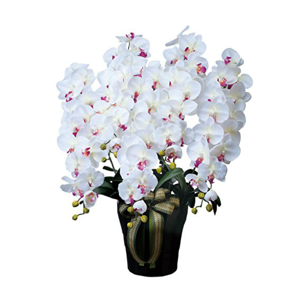 光触媒 光の楽園 ロイヤル胡蝶蘭5本立W/AB 447A300約 幅60×奥行50×高さ76cm人工観葉植物 造花 フェイクフラワー フラワーアレンジメント アートフラワー おしゃれ インテリア ギフト お祝い
