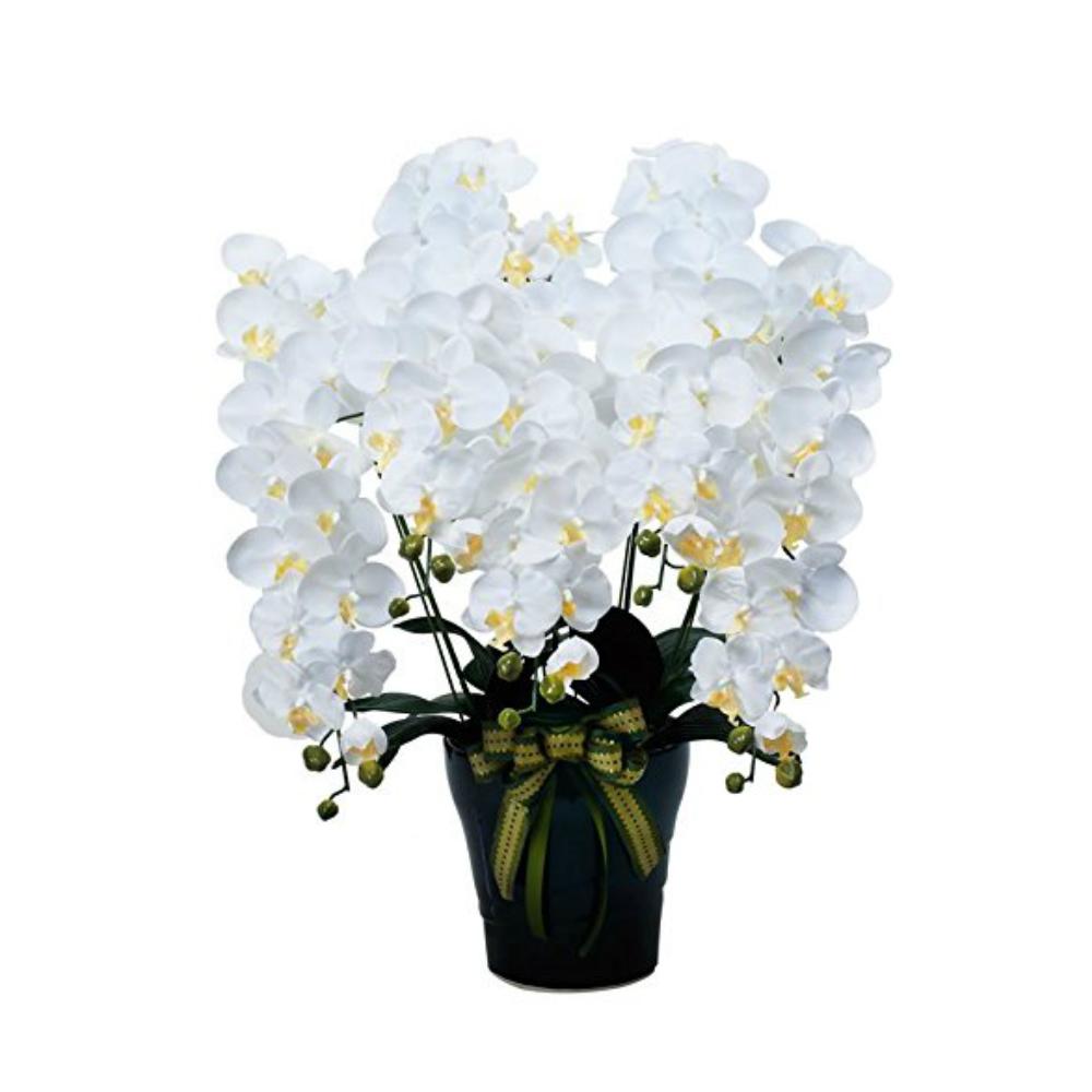 光触媒 人工観葉植物 造花(フェイクフラワー)光の楽園 アートフラワー ロイヤル胡蝶蘭5本立W 532A300お部屋の消臭・抗菌・防汚効果があります。水やり・お手入れ不要置くだけで素敵な癒し空間約 幅60×奥行50×高さ76cm