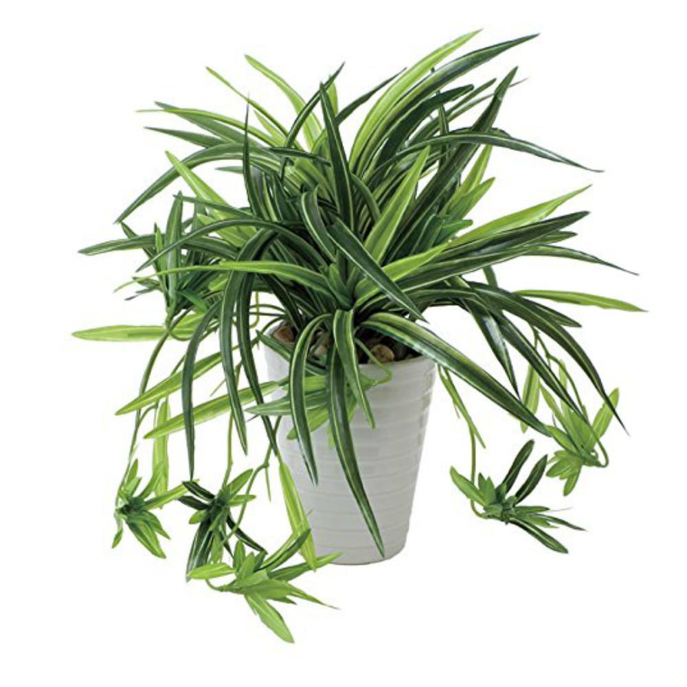 光触媒 人工観葉植物 造花(フェイクグリーン フェイクフラワー)光の楽園 ドラセナ丸ポット 439A60お部屋の消臭・抗菌・防汚効果があります。水やり・お手入れ不要置くだけで素敵な癒し空間約 幅30×奥行30×高さ28cm