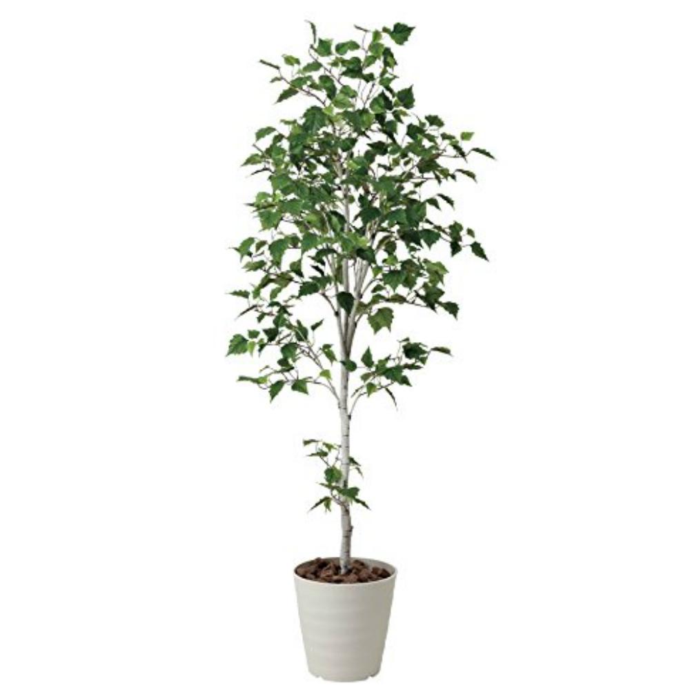 光触媒 人工観葉植物 造花 フェイクグリーン 光の楽園 白樺シングル 1.8m おしゃれ インテリア 大型 421A300