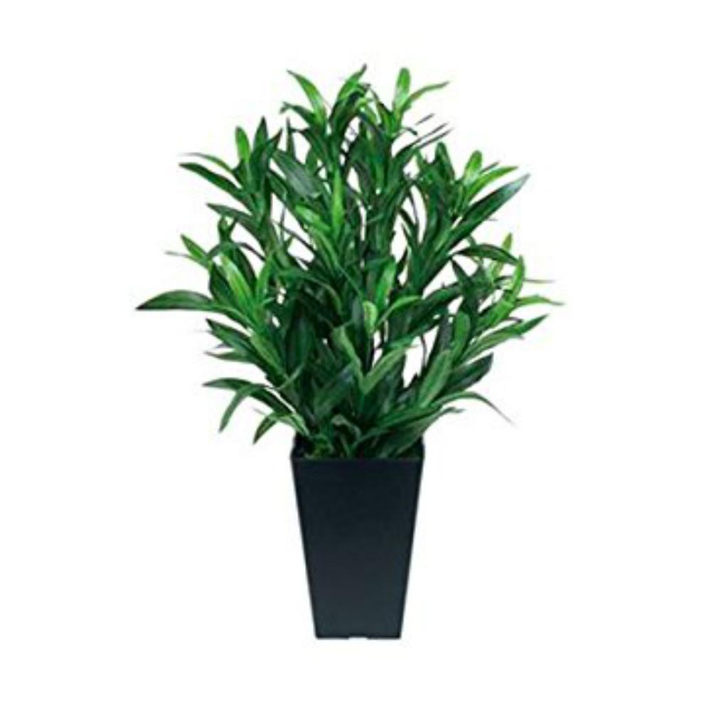 光触媒 人工観葉植物 造花(フェイクグリーン・フェイクフラワー)光の楽園 スパイダー 518A70お部屋の消臭・抗菌・防汚効果があります。水やり・お手入れ不要置くだけで素敵な癒し空間を演出約 幅33×奥行33×高さ50cm