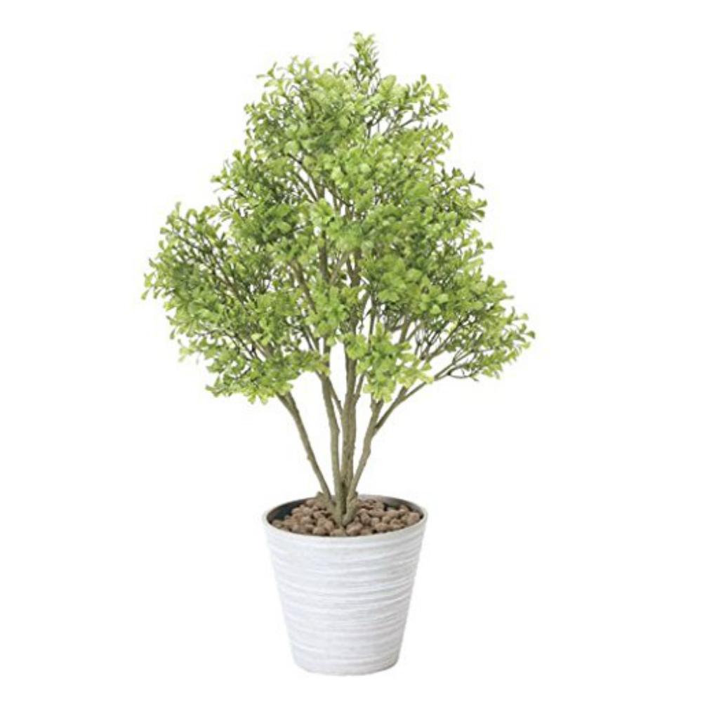 光触媒 人工観葉植物 造花 フェイクグリーン 光の楽園 ボックスウッド おしゃれ インテリア 卓上 831A100