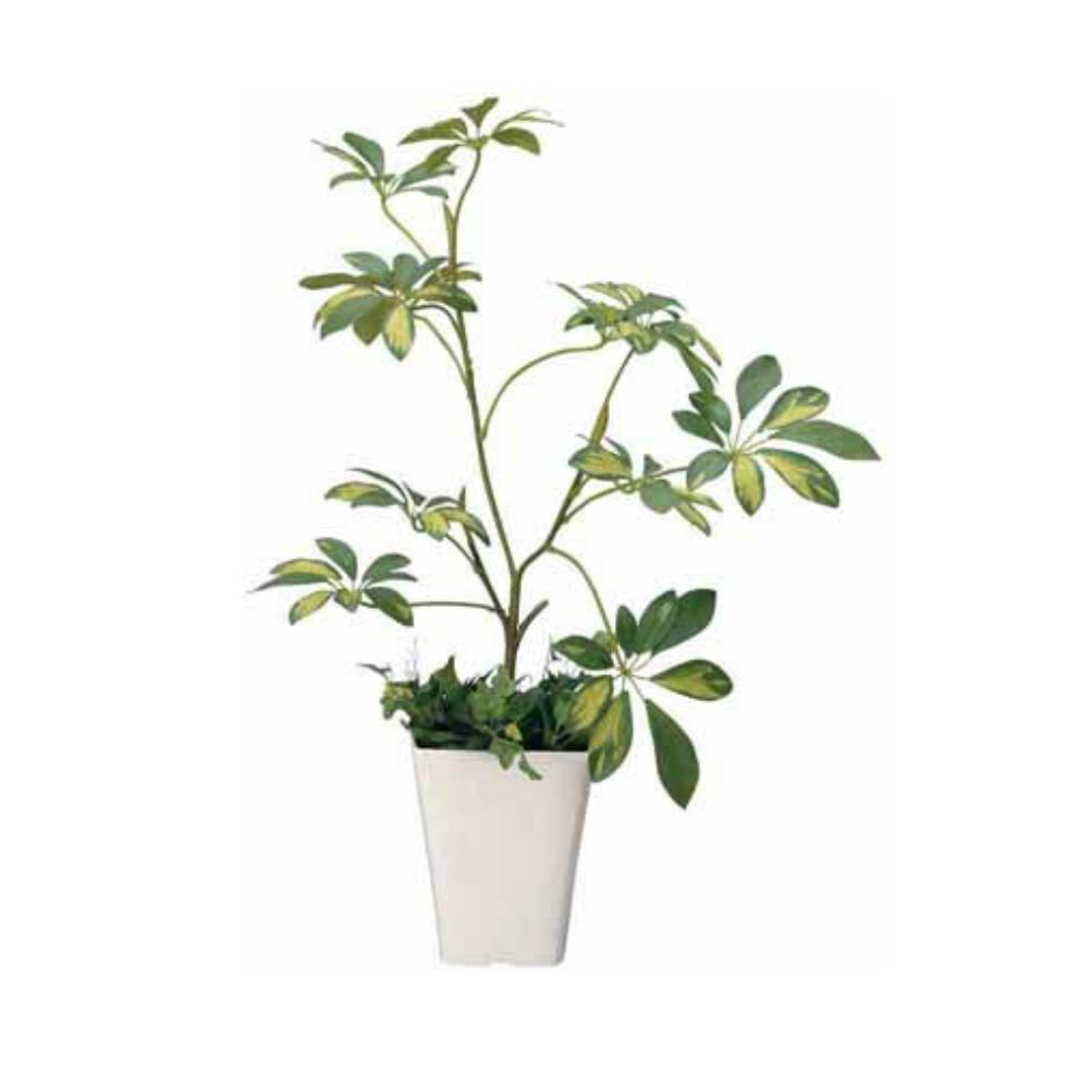 光触媒 人工観葉植物 造花 フェイクグリーン 光の楽園 シェフレラ おしゃれ インテリア 大型 212A80