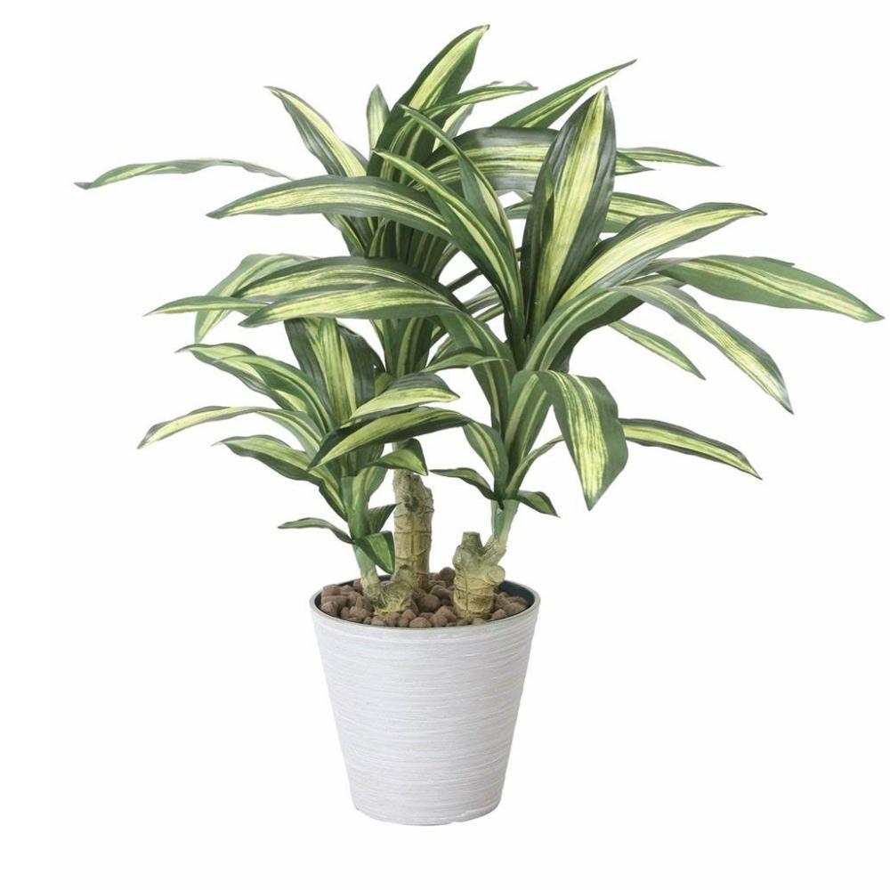 光触媒 光の楽園 幸福の木S 829A120約 幅55×奥行55×高さ60cm人工植物 造花 フェイクグリーン おしゃれ インテリア 大型