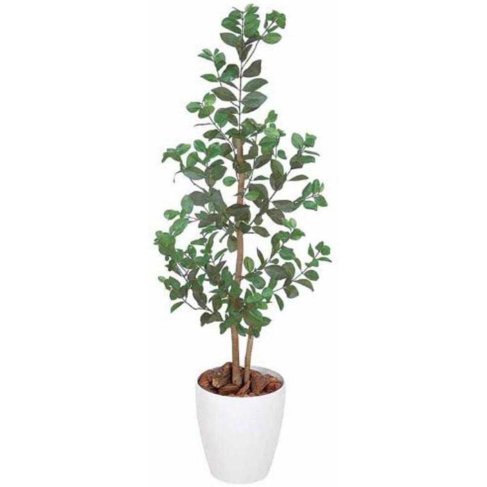 光触媒 光の楽園 オリエンタルフィカス1.15 204A150約 幅40×奥行40×高さ115cm人工植物 造花 フェイクグリーン おしゃれ インテリア 大型