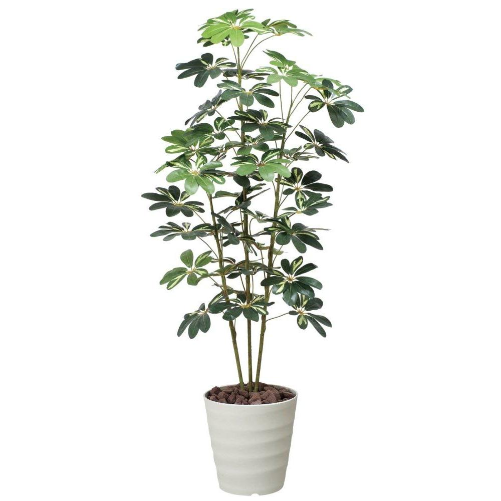 光触媒 人工観葉植物 造花(フェイクグリーン・フェイクフラワー)光の楽園 カポック斑入り1.5m 355A200お部屋の消臭・抗菌・防汚効果があります。水やり・お手入れ不要置くだけで素敵な癒し空間を演出してくれます。