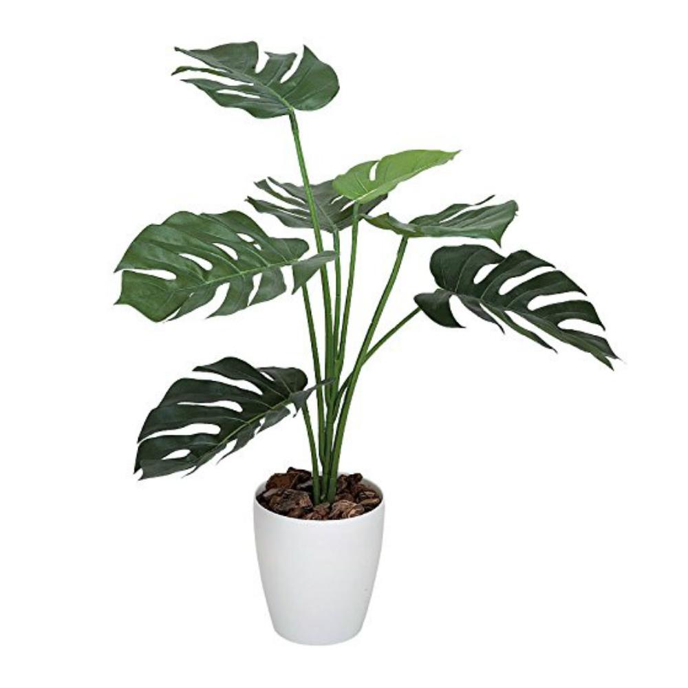 光触媒 人工観葉植物 造花(フェイクグリーン・フェイクフラワー)光の楽園 モンステラ75cm 225C80お部屋の消臭・抗菌・防汚効果があります。水やり・お手入れ不要置くだけで素敵な癒し空間を演出約 幅60×奥行60m×高さ75cm