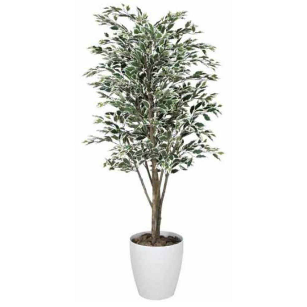光触媒 人工観葉植物 造花(フェイクグリーン)光の楽園 ベンジャミンツリー斑入り 1.6m 156C380お部屋の消臭・抗菌・防汚効果があります。水やり・お手入れ不要置くだけで素敵な癒し空間約 幅65×奥行65×高さ160cm