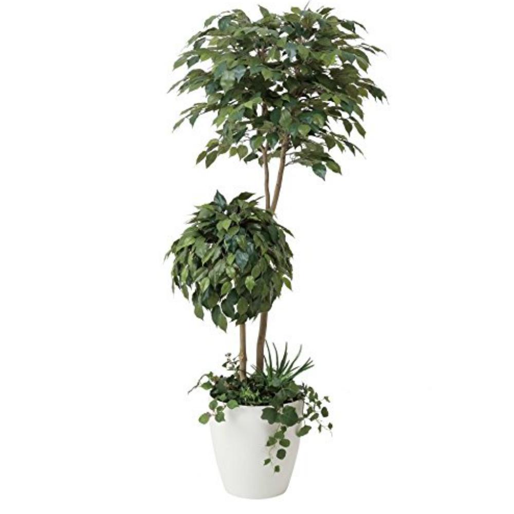光触媒 光の楽園 ベンジャミンダブルフェイス1.8植栽付 413A500約 幅75×奥行70×高さ180cm人工植物 造花 フェイクグリーン おしゃれ インテリア 大型
