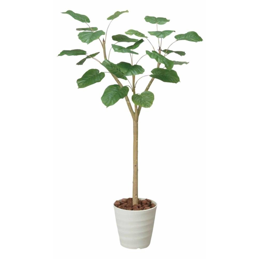 光触媒 人工観葉植物 造花(フェイクグリーン・フェイクフラワー)光の楽園 ウンベラータ 1.8m 172E360お部屋の消臭・抗菌・防汚効果があります。水やり・お手入れ不要置くだけで素敵な癒し空間を演出約 幅85×奥行70×高さ180cm