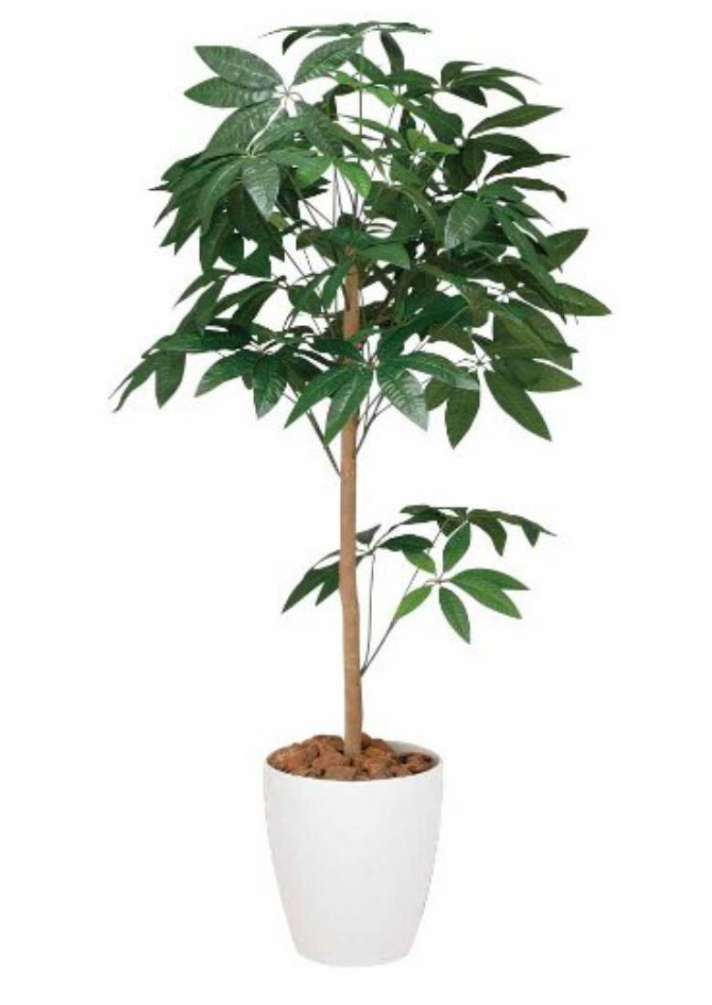 光触媒 人工観葉植物 造花(フェイクグリーン)光の楽園 パキラトピアリー 1.5m 194B250お部屋の消臭・抗菌・防汚効果があります。水やり・お手入れ不要置くだけで素敵な癒し空間約 幅60×奥行60×高さ150cm