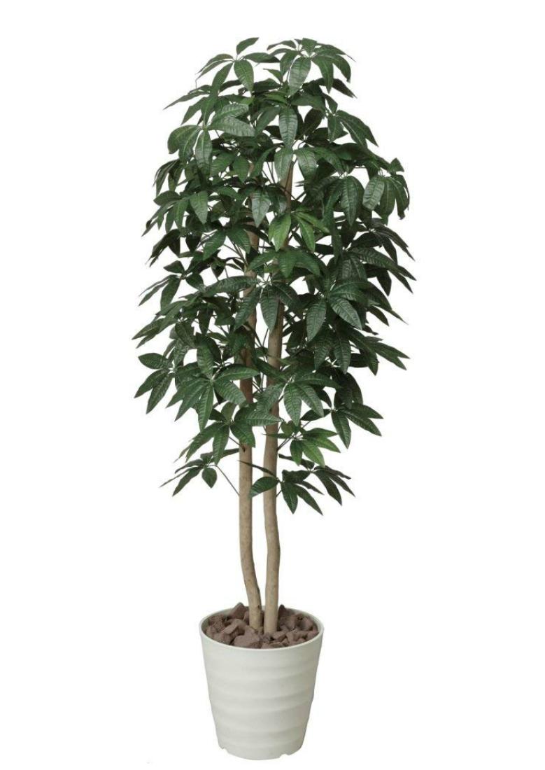 光触媒 人工観葉植物 造花 フェイクグリーン 光の楽園 パキラツリー 1.6m おしゃれ インテリア 大型 170A300